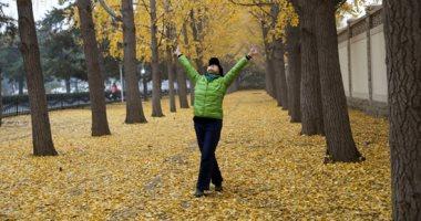 سيد الفصول.. كل ما تريد معرفته عن الاعتدال الخريفى وبداية الخريف × 10 معلومات