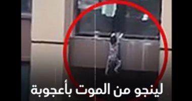 الطفل المعجزة.. سقط من الطابق 13 ونجا من الموت.. فيديو