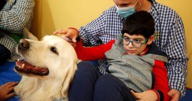 تربيتهم سهلة ومستاهلة.. اعرف تأثير تربية الكلاب على صحتك النفسية