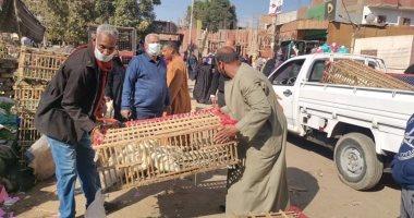 بيطرى أسوان يحظر بيع الطيور الحية بسوق أدفولمنع تفشى الأمراض.. صور