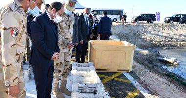 الرئيس عبد الفتاح السيسى خلال افتتاحات اليوم