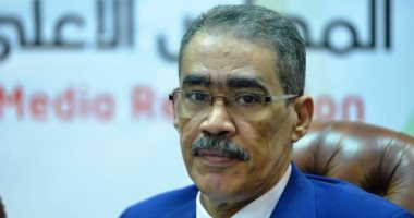 ضياء رشوان مصر القوية القادرة ضمانة الاستقرار والسلام فى المنطقة