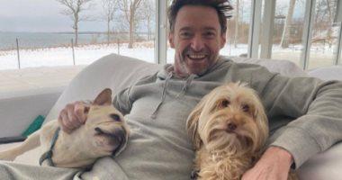 هيو جاكمان فى أحدث صورة له من منزله مع كلبيه دالى واليجرا.. صور
