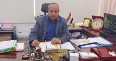 رئيس كهرباء مصر العليا يؤكد تطوير شبكات الأقصر بتكلفة تتخطى المليار جنيه