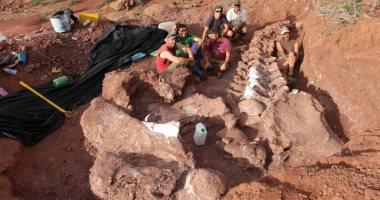 صورة اكتشاف حفريات ضخمة فى الأرجنتين تشير لأحد أقدم وأضخم فصائل الديناصورات