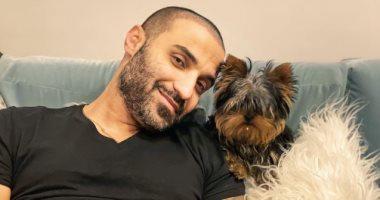 أحمد فهمى × صورة مع كلبيه زيزى وبوجى ويوجه رسالة لـ هنا الزاهد