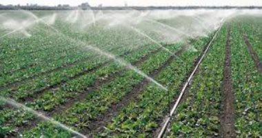 3 حالات يحظر ممارستها إلا بترخيص لحماية نهر النيل من التلوث.. تعرف عليها