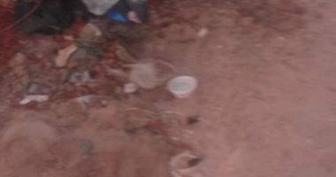 أهالى قرية نجع عبد الرءوف بالإسكندرية يطالبون رفع القمامة.. والشركة ترد