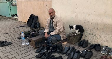 """حارس القطط.. عم محمد ماسح الأحذية وهب حياته لرعاية الحيوانات """"فيديو"""""""