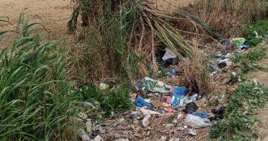 شكوى من تراكم القمامة فى مصرف قرية اليمن بمحافظة الإسكندرية.. والشركة ترد