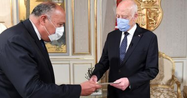 وزير الخارجية يُسلم رئيس تونس رسالة من الرئيس السيسى حول سد النهضة