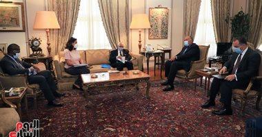 شكرى يؤكد لوزير خارجية مالى حرص مصر على نشر المفاهيم الصحيحة للإسلام.. صور