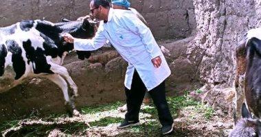 تحصين وعلاج 136 ألفا و972 رأس ماشية وطائر فى حملات بالشرقية والغربية
