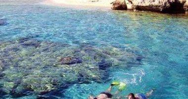 أبو منقار والجفتون.. جزر تستقبل الرحلات البحرية بديلا للشواطئ المغلقة