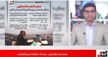 مصر تنتصر لفلسطين.. رسائل حاسمة للرئيس السيسى: لابد من إنهاء العنف فورا