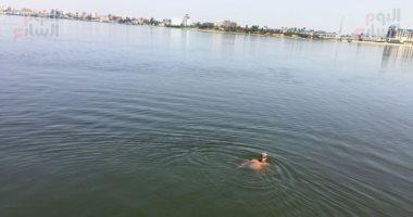 السباح العالمى سيد الباروكى يعبر قناة السويس فى آخر تجاربه قبل عبور المانش.. لايف