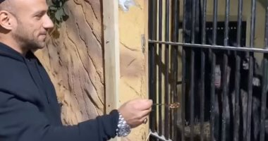 "أحمد مكي يُطعم قردا من خلف قفص حديدي ""فيديو"""
