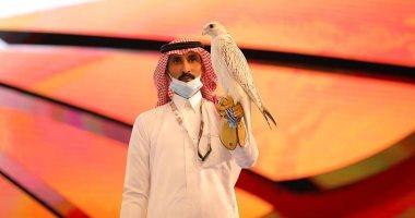 السعودية نيوز |                                              بيع صقر نادر الجمال بمبلغ قياسي في مزاد دولي بالسعودية.. صور