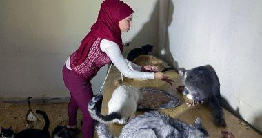 باعت ممتلكاتها لإطعامهم.. سيدة سورية ترعى 120 قطا و20 كلبا فى منزلها.. صور