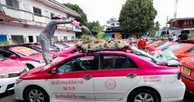 بستان التاكسى.. تايلاند تزرع سيارات الأجرة بعد أن تركها المستأجرون مهجورة