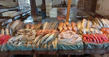 الغرفة التجارية: أسعار الأسماك مستقرة والبوى يبدأ من 40 جنيها للكيلو