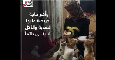 """منقذة القطط.. مروة تتبنى فى منزلها أكثر من 150 قطة """"فيديو"""""""