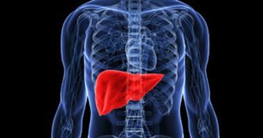 اتباع نظام غذائى غنى بالسكر أثناء الحمل يسبب الكبد الدهنى فى النسل