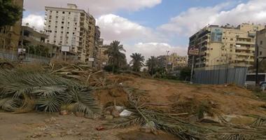 """رئاسة """"فاقوس"""" بالشرقية عن سبب قطع أشجار المدينة: """"تعيق الرؤية"""""""
