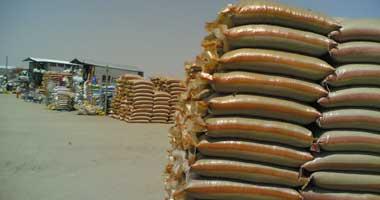 مشاكل التخزين تهدد جودة القمح وصحة الإنسان