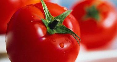 السبانخ والبيض والطماطم أطعمة صحية تحمى الشعر التساقط