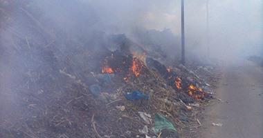 الحماية المدنية تسيطر على حريق بمخلفات وأشجار بمنطقة العباسية