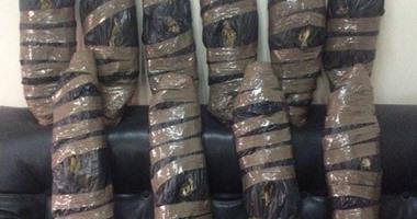سقوط عاطل بحوزته 40 لفافة بانجو فى حملة تفتيشية بأسوان