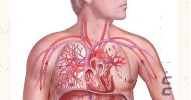 البكتريا المعوية بجسم الإنسان مؤشرًا الإصابة بالسكر