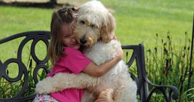 ماذا يجب ان تفعله اذا علمت ان كلبك يعانى من مرض ما
