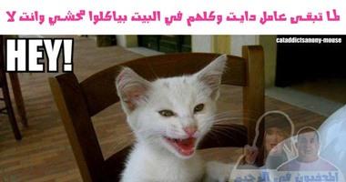 لو بتعمل رجيم قاسى انضم لمجموعات  المعذبون من الدايت فى مصر