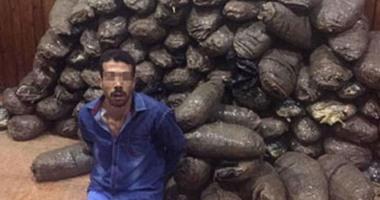 بالصور.. القبض على عاطل وبحوزته 350 كيلو بانجو فى الإسماعيلية
