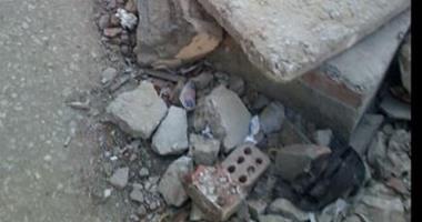 واتساب اليوم السابع: انتشار مياه الصرف والكلاب الضالة بالتجمع الأول