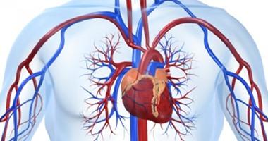 أستاذ قلب: القسطرة تعالج ثقب القلب فى الأطفال وتجنبهم الجراحات