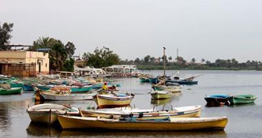 معلومات عن التماسيح في بحيرة محمد علي بمحافظة الاسماعيلية