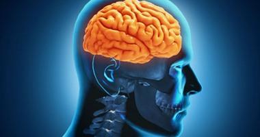 دراسة طبية: العلاقة الجنسية تمنح المخ طاقة وحيوية وتجعل الإنسان أكثر ذكاءً