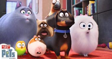 198 مليون دولار أمريكى إيرادات فيلم الإنيميشن The Secret Life of Pets