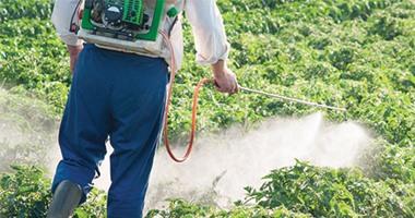 لمزارعى الصيفى.. تعرف على نصائح الزراعة للاستخدام الآمن للمبيدات