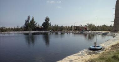 هيئة الثروة السمكية تحجز إداريا على 292 مزرعة سمكية بدمياط