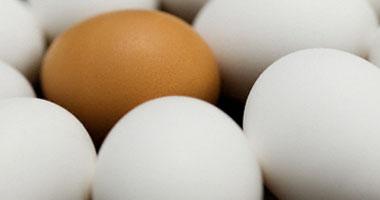 5 عناصر غذائية مختلفة يحصل عليها جسمك إذا تناولت بيضة واحدة