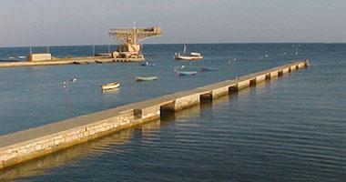 ارتفاع معدل تداول شاحنات البضائع والحاصلات الزراعية بموانى البحر الأحمر