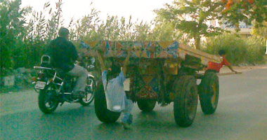 مصرع طفلة سقطت أسفل عجلات عربة كارو في المنشأة جنوب سوهاج