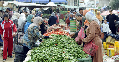 اليوم.. الحكومة تطرح الخضراوات والفواكه فى الميادين بأسعار مخفضة
