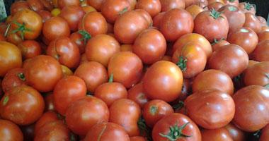 دراسة بريطانية: الطماطم تقى من الإصابة بالسرطان