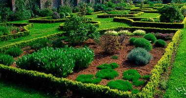 """دراسة أجنبية عن """"فن تصميم الحدائق الإسلامية"""""""