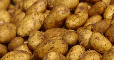 البطاطس تخفض الدم المرتفع s4200918113910.jpg